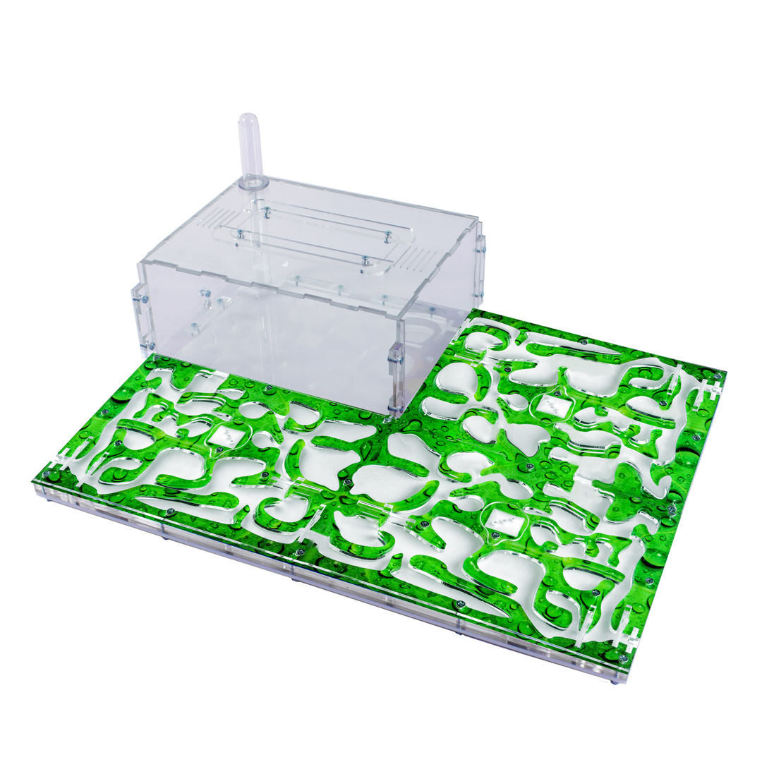 Ферма «Муравьиный Рай XL» (зеленый лист)
