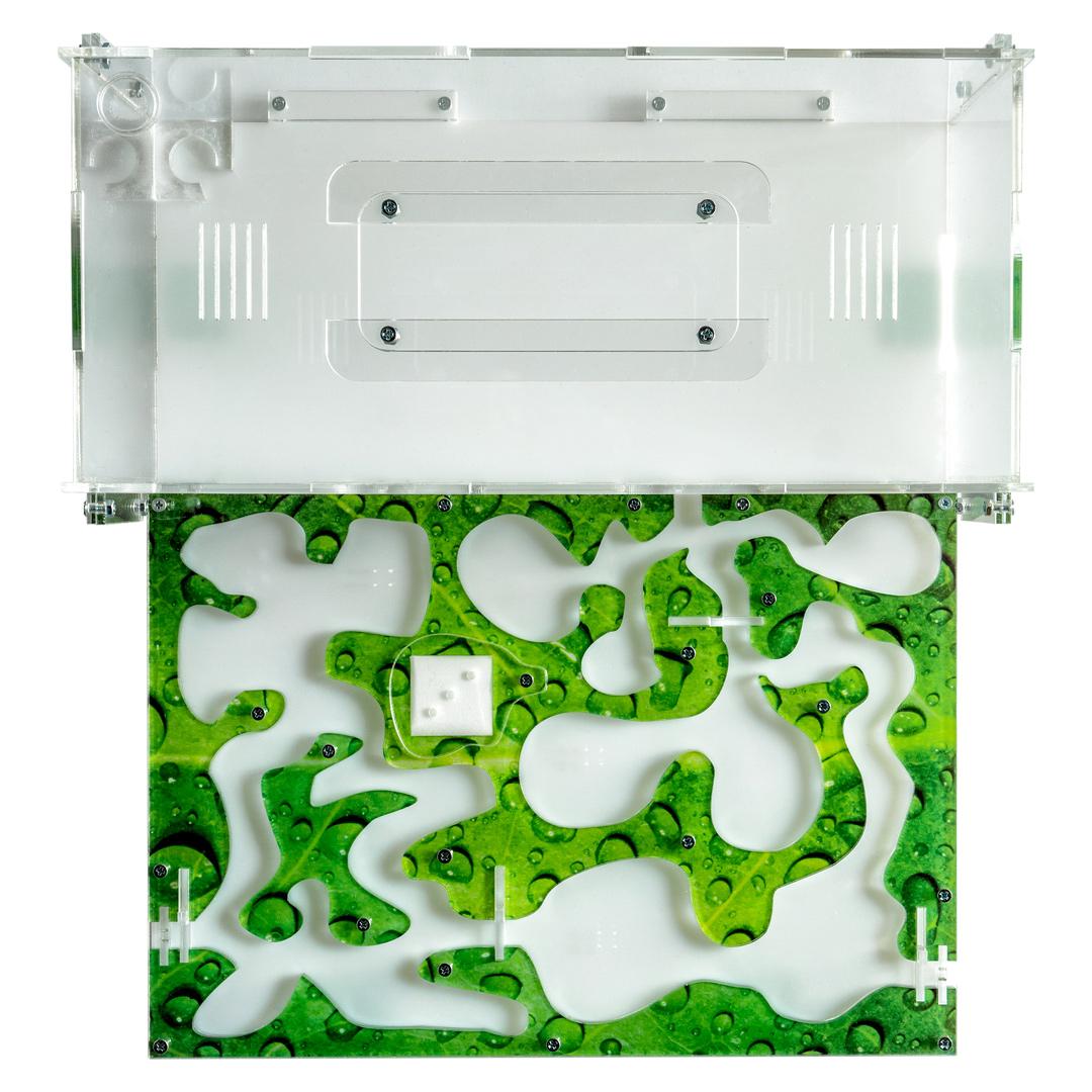 Комплекты с Муравьиной фермой «Муравьиный рай L» зеленый лист